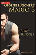Riskybusiness bookcover